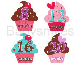 Cutest Cupcakes Listing8-20weeks