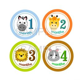 Baby Boy Milestone Stickers
