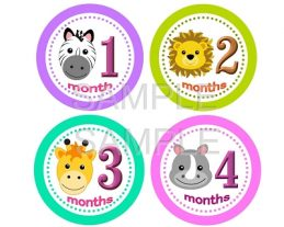 Alexis - Adorable Baby Girl Animal Safari Monthly Photo Stickers