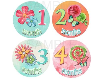 Addison - Beautiful Flowers and Butterflies Monthly Photo Stickers