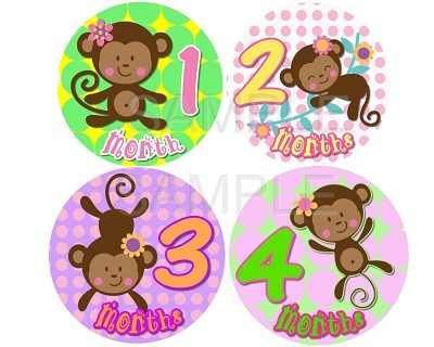 Amanda - Cutest Monkey Girl Monthly Photo Stickers
