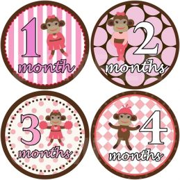 Amber - Sporty Sock Monkey Monthly Photo Stickers