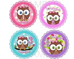 Amelia - Cute Cute Baby Owl Girl Monthly Photo Stickers