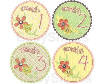 Christy - Sweet Peachy Flowers Monthly Photo Stickers