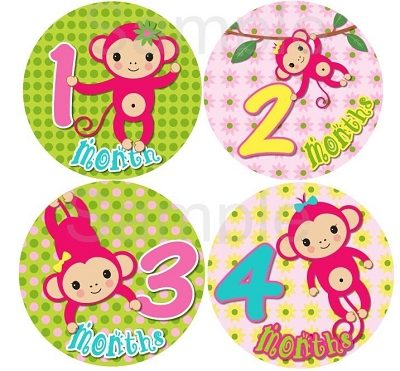 Dorothy - Lil Monkey Girl Monthly Photo Stickers