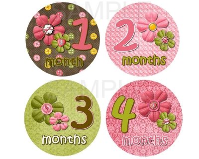 Elizabeth - Cute as a Button Monthly Photo Stickers