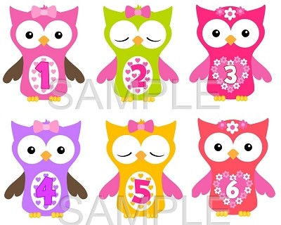 Ella - Cutest Owl Girls in Town Monthly Photo Stickers
