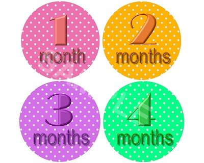 Emilia - Colorful Polkadots Monthly Photo Stickers