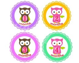 Emily - Cute Owl Monthly Photo Stickers