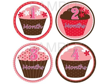 Erica - Sweet Cupcakes Monthly Photo Stickers