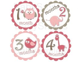 Erin - Cutest Baby Girl Animals Monthly Photo Stickers