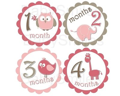 Erin - Cutest Baby Girl Animals Monthly Photo Stickers