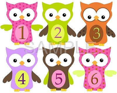 Evelyn - Lovely Owls Monthly Photo Stickers