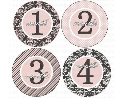 Gracie - Beautiful Sophisticated Pink and Grey Patterns Monthly Photo Stickers
