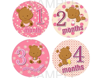 Haily - Sweet Teddy Bear Baby Girl Monthly Photo Stickers