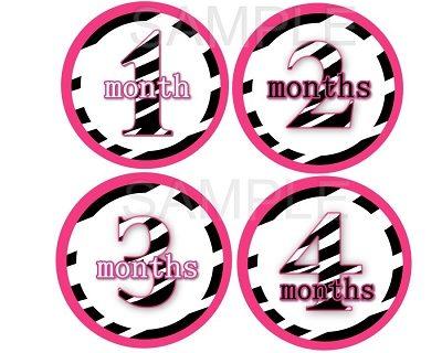 Jessie - Hot Pink Zebra Girl Monthly Photo Stickers