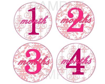 Juliet - Pink Elegance Monthly Photo Stickers