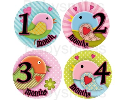 Kaelyn - Sweet Lovely Girly Birds Monthly Photo Stickers