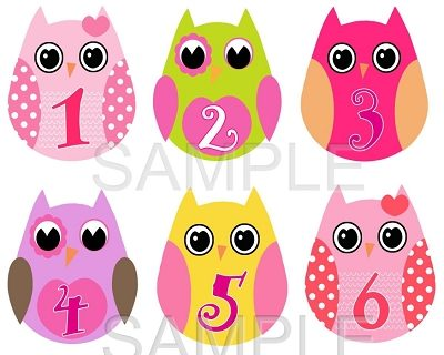 Kate - Super Cute Baby Owl Girls Monthly Photo Stickers