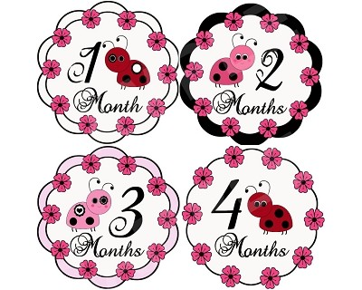 Kaylee - Lucky Ladybug Monthly Photo Stickers