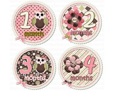 Lucy - Cute Owl with Beautiful Flowers Monthly Photo Stickers