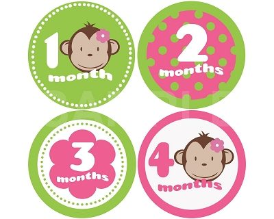 Mckenzie - Mod Monkey Monthly Photo Stickers