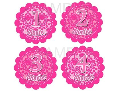 Melody - Pretty Lady Pink Damask Monthly Photo Stickers