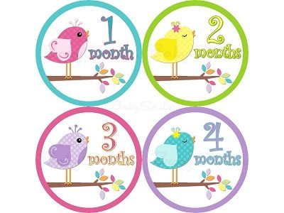 Nadine - Lil Sweet Baby Birds Monthly Photo Stickers