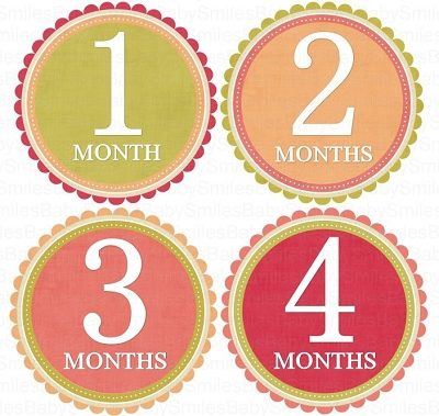 Natalie - Sweet Pink, Peach, Red and Green Design Monthly Photo Stickers