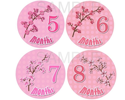 Penelope - Beautiful Cherry Blossoms Monthly Photo Stickers