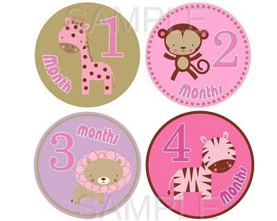 Rachel - Girl Safari Monthly Photo Stickers