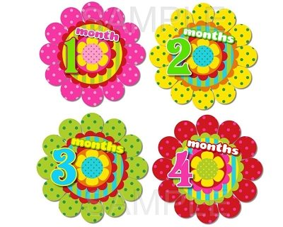 Rosalyn - Lovely Colorful Flowers Monthly Photo Stickers