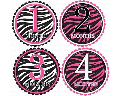 Sabrina - Beautiful Hot Pink Zebra Patterns Monthly Photo Stickers