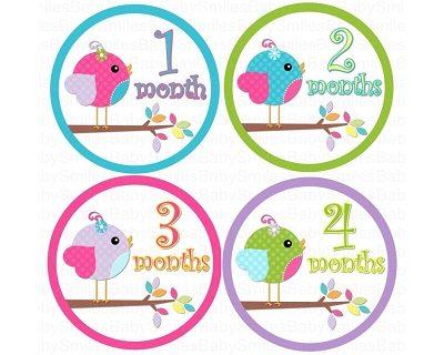 Sasha - Sweet Lil Baby Birds Monthly Photo Stickers