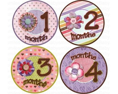 Serenity - Cute Pink and Purple Flowers with Buttons Monthly Photo Stickers