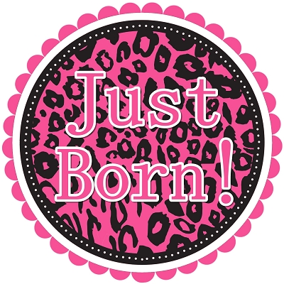 Stella - Hot Pink Animal Prints Monthly Photo Stickers