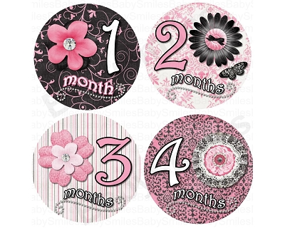 Summer - Fancy Flowers Monthly Photo Stickers