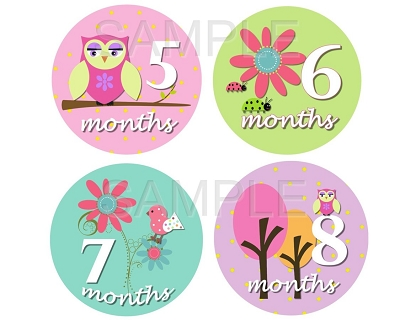 Sydney - Sweet Owl Birds & Nature Monthly Photo Stickers