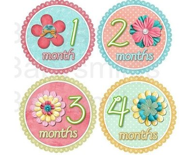 Valentina - Beautiful Flowers with Cute Buttons Monthly Photo Stickers