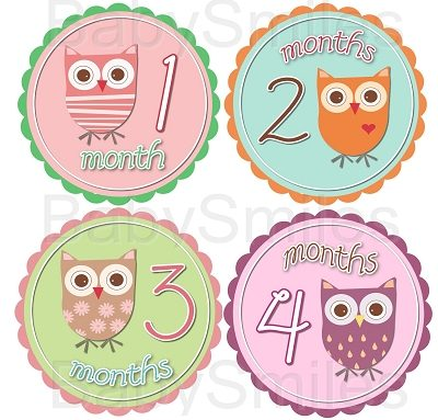 Victoria - Super Sweet Owl Girls Monthly Photo Stickers