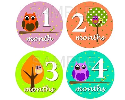Violet - Cutest Owl Girl Monthly Photo Stickers