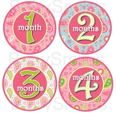 Zoe - Beautiful Paisley Monthly Photo Stickers