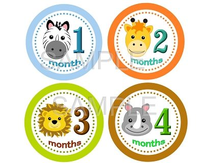 Alex - Adorable Baby Boy Animal Safari Monthly Photo Stickers