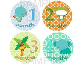 Ashton - Lil Rainforest Friends Monthly Photo Stickers
