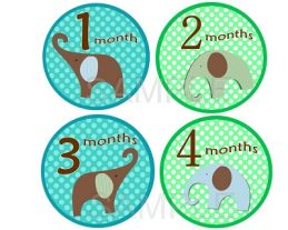 Cameron - Adorable Baby Boy Elephants Monthly Photo Stickers