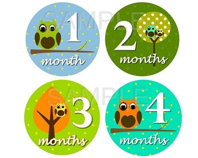 Carter - Cutest Owl Boy Monthly Photo Stickers