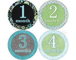 Conner - Nice Blue, Green & Black Pattern Monthly Photo Stickers