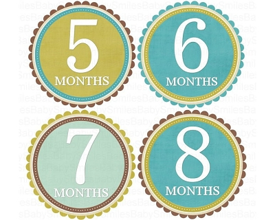 Dereck - Nice Blue, Green and Brown Design Monthly Photo Stickers