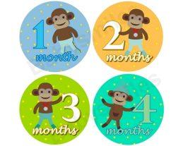 Drew - Sports Sock Monkey Monthly Photo Stickers