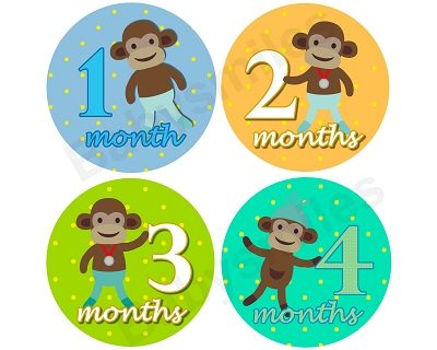Drew - Sports Sock Monkey Monthly Photo Stickers